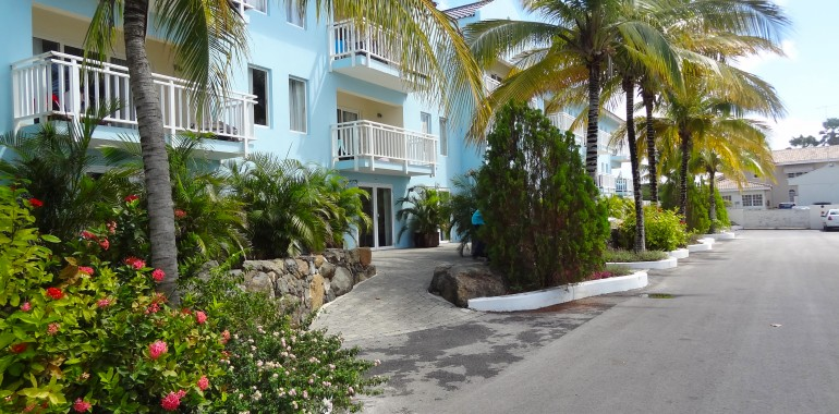 curaçao - dolphin suites
